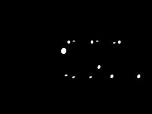 nibelungenstadt_worms_logo